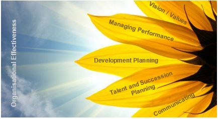 Organisational effectiveness sunflower